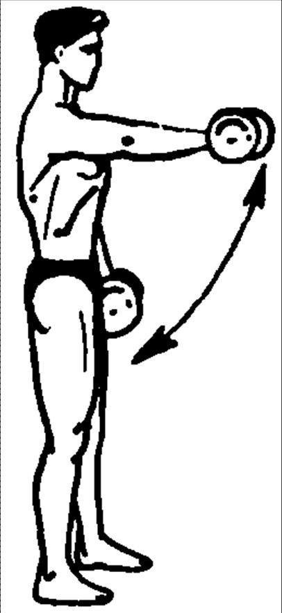 частично закрыли комплекс упражнений в картинках для мышц плеча место издревле окружено