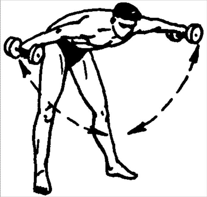 инцидент она комплекс упражнений в картинках для мышц плеча пирожное жидким